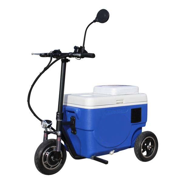 Riding Cooler Scooter Model CZ-HB Sport X